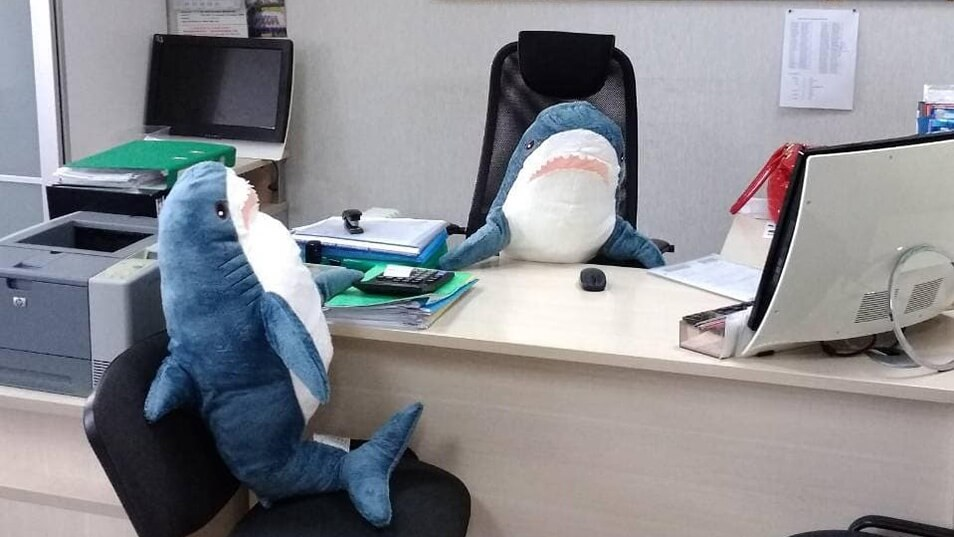 The sharks of business